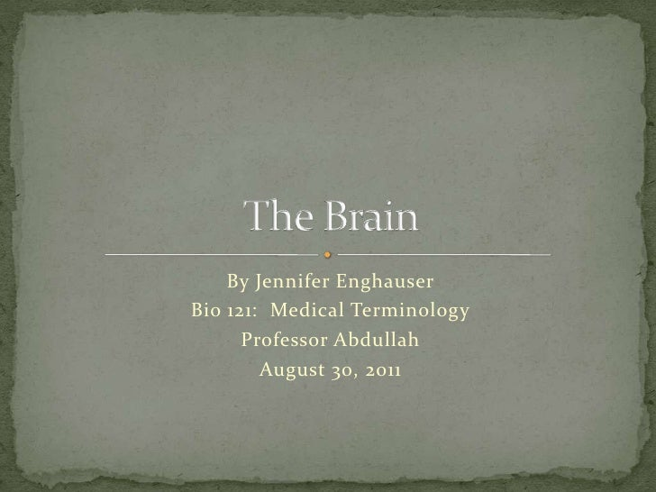 By Jennifer Enghauser<br />Bio 121:  Medical Terminology<br />Professor Abdullah<br />August 30, 2011<br />The Brain<br />