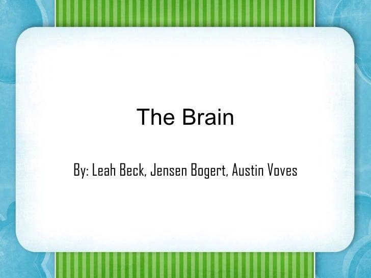 The Brain By: Leah Beck, Jensen Bogert, Austin Voves