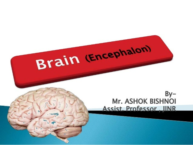 By- Mr. ASHOK BISHNOI Assist. Professor , JINR