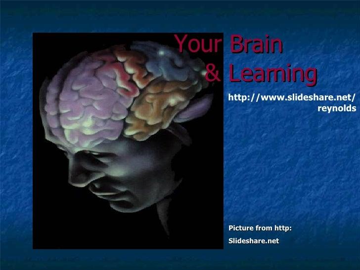 Picture from http:  Slideshare.net Your Brain & Learning   http://www.slideshare.net/reynolds