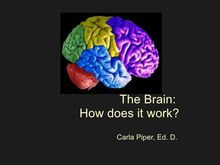 The Brain:  How does it work? Carla Piper, Ed. D.