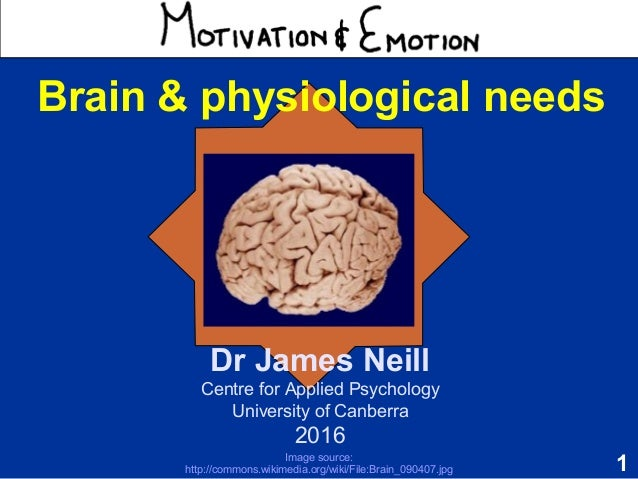1 Motivation & Emotion Dr James Neill Centre for Applied Psychology University of Canberra 2016 Brain & physiological need...