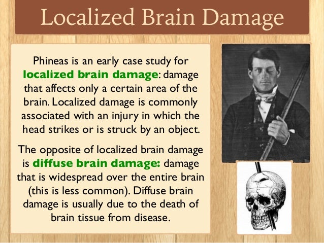 phineas gage 2 essay Read this free psychology research paper and other term papers, research papers and book reports phineas gage paper phineas gage was a foreman working for the.