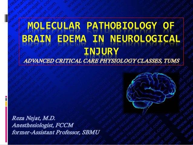 MOLECULAR PATHOBIOLOGY OF BRAIN EDEMA IN NEUROLOGICAL INJURY ADVANCED CRITICAL CARE PHYSIOLOGY CLASSES, TUMS Reza Nejat, M...