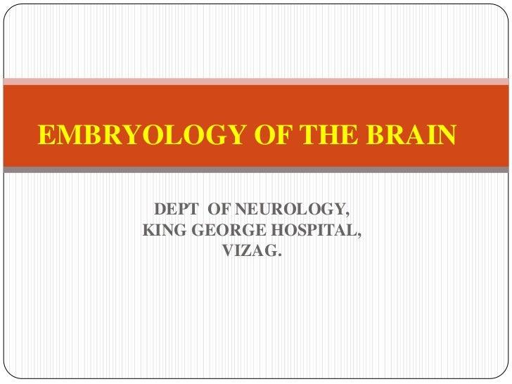 DEPT  OF NEUROLOGY,<br />KING GEORGE HOSPITAL,<br />VIZAG.<br />EMBRYOLOGY OF THE BRAIN<br />