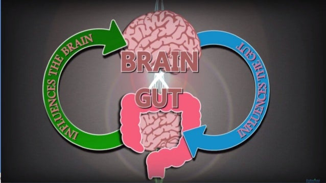 Gut Brain Connection >> Brain Gut Connections 1