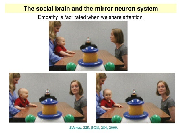 Read more on Inside-the-brain