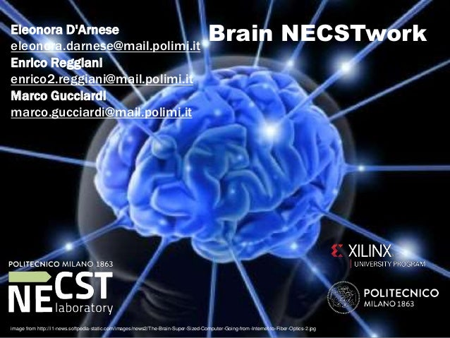 Brain NECSTworkEleonora D'Arnese eleonora.darnese@mail.polimi.it Enrico Reggiani enrico2.reggiani@mail.polimi.it Marco Guc...