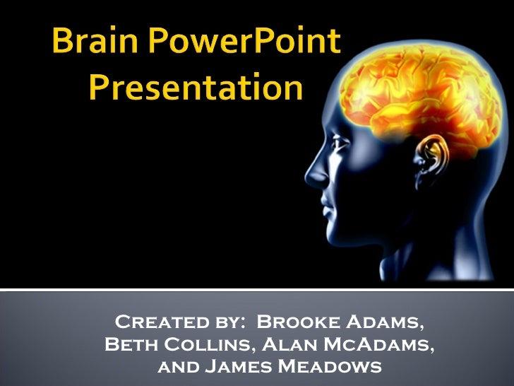 Created by:  Brooke Adams, Beth Collins, Alan McAdams, and James Meadows