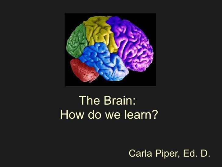 The Brain:  How do we learn? Carla Piper, Ed. D.