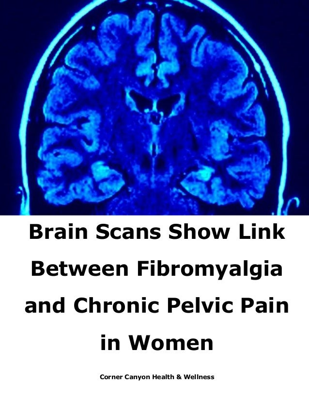 Scans Show Possible Link Between Brain >> Brain Scans Show Link Between Fibromyalgia And Chronic Pelvic Pain In