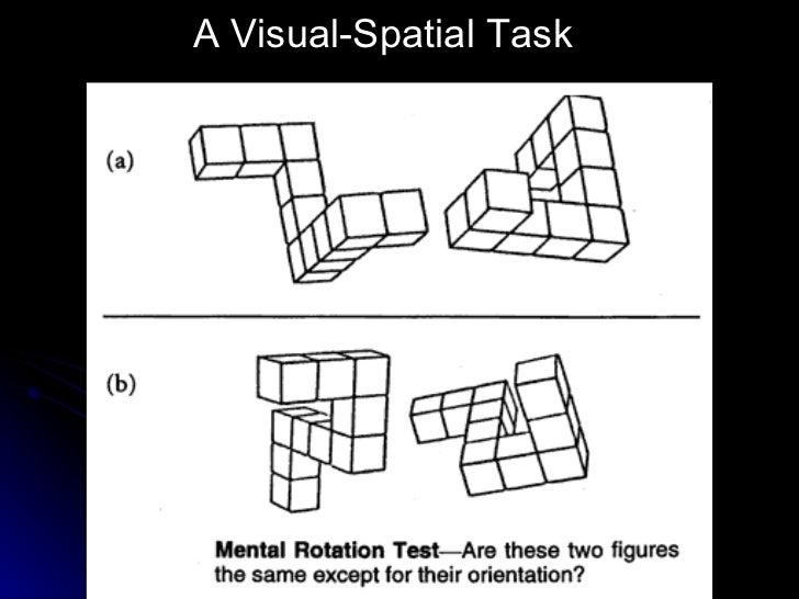 Brain Slides