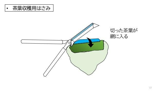 切った茶葉が 網に入る • 茶葉収穫用はさみ 12