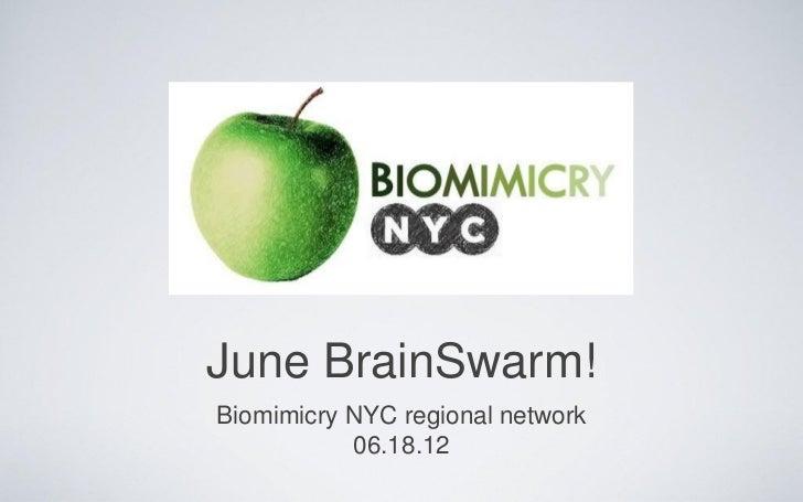 June BrainSwarm!Biomimicry NYC regional network           06.18.12