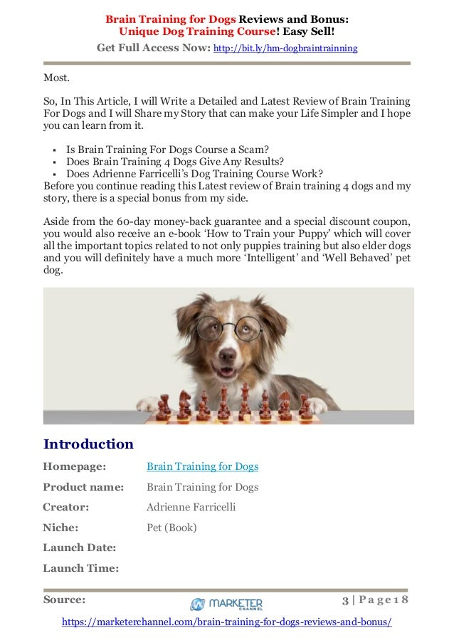 Brain Training 4 Dogs Warranty Support