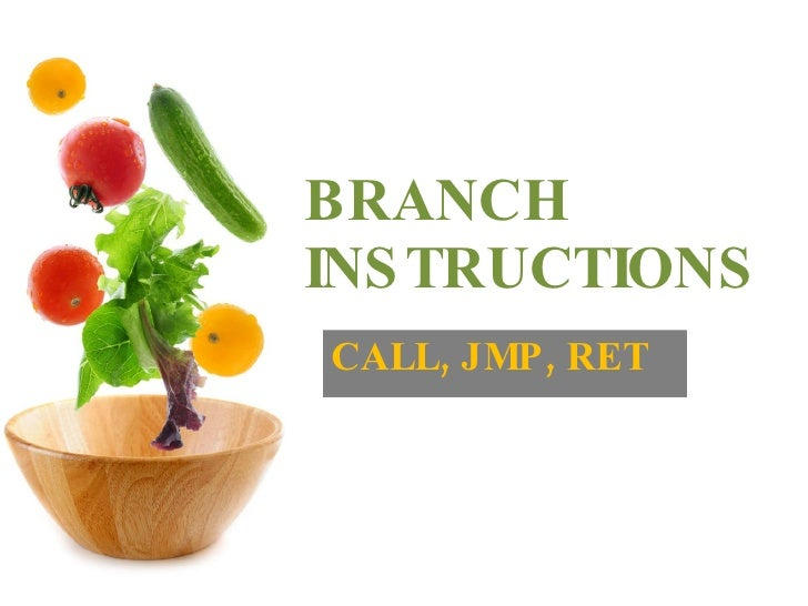 BRANCH INSTRUCTIONS CALL, JMP, RET