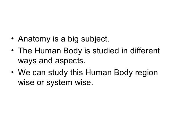 Branches Of Anatomy 2