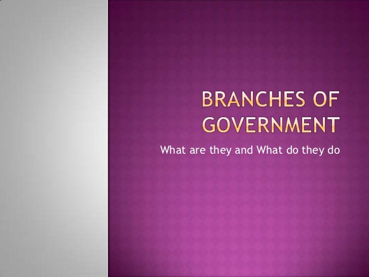 Branches of government<br />What are they and What do they do<br />