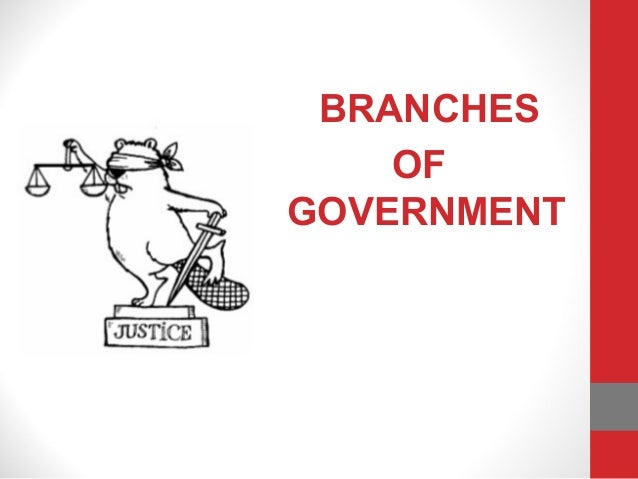 BRANCHESOFGOVERNMENT