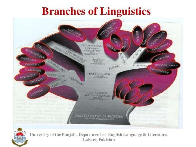 Branches of LinguisticsUniversity of the Punjab , Department of English Language & Literature.Lahore, Pakistan