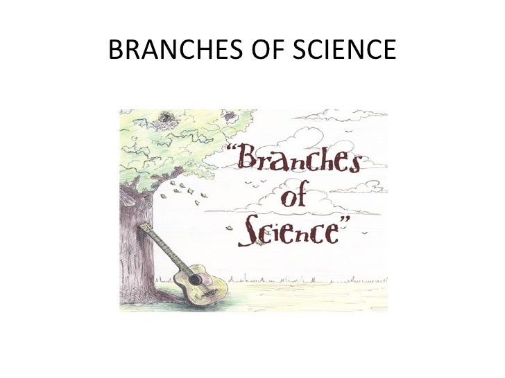 Printables Branches Of Science Worksheet branches of science science