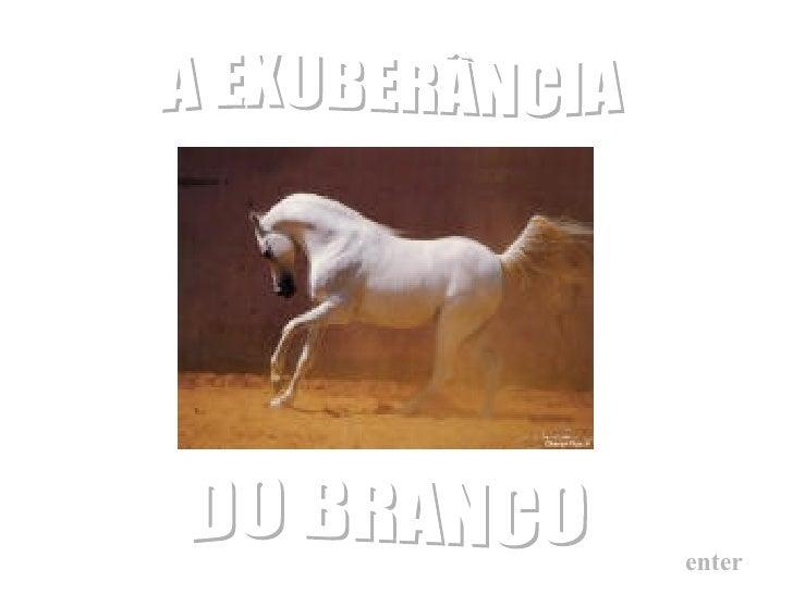 A EXUBERÂNCIA enter DO BRANCO