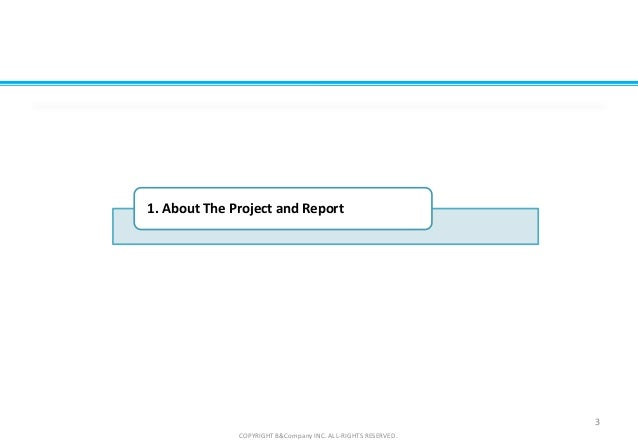 3 COPYRIGHT B&Company INC. ALL-RIGHTS RESERVED. 1. About The Project and Report