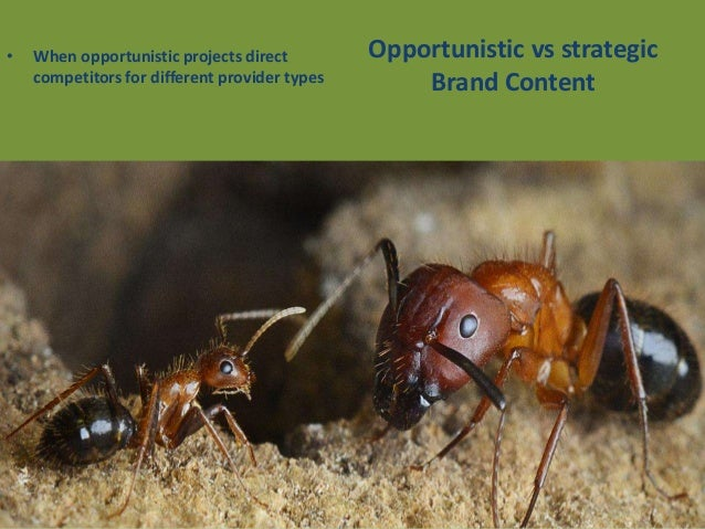Conclusion: Friends or Foes? Friends and partners in fulfilling the wider range of objectives of Strategic Brand Content