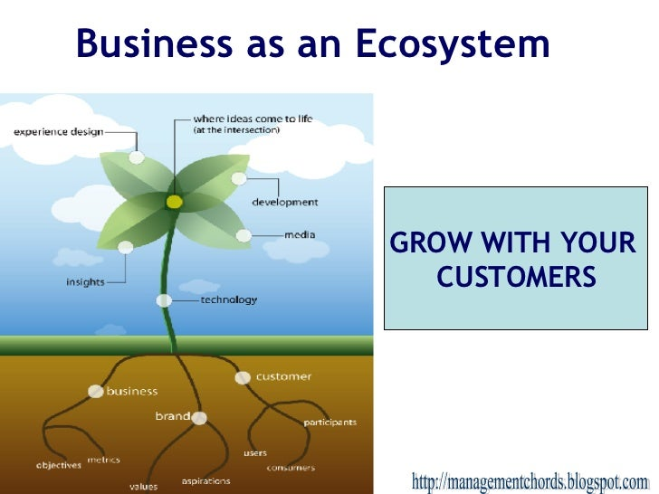 Business as an Ecosystem http://managementchords.blogspot.com GROW WITH YOUR  CUSTOMERS