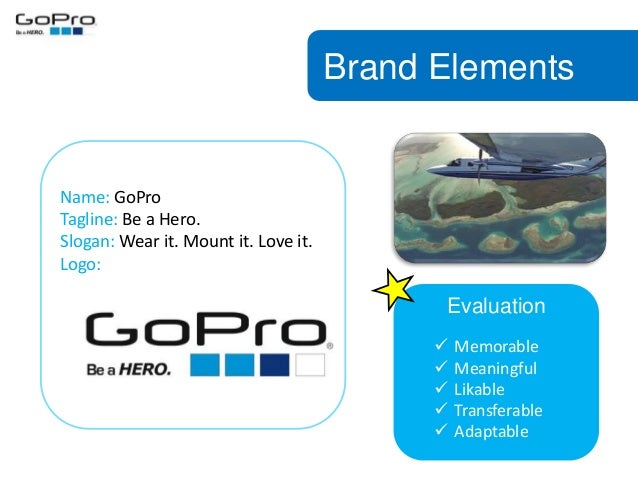 brand management project gopro camera