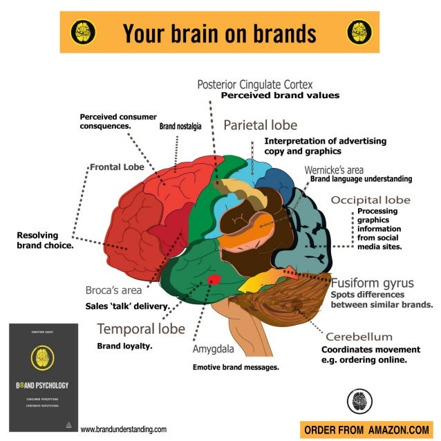 Brand psychology your brain on brands infographic ccuart Gallery