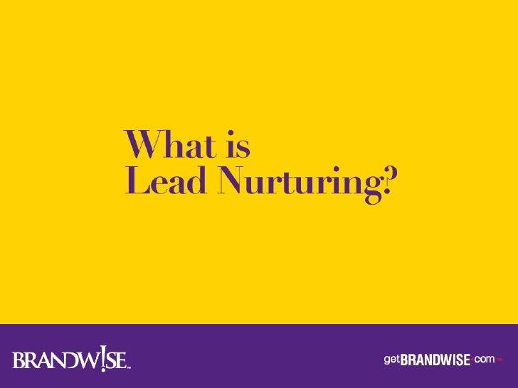 Brandwise Lead Nurturing Slide 3