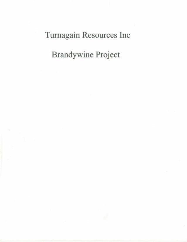 2015 Brandywine property synopsis MLS Mining
