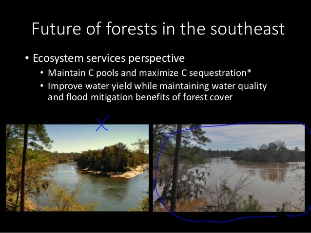 ecosystem approach variation of forests Used to order plots along major axes of composition variation, which are inferred moisture and  search at the site uses an integra ted ecosystem approach to .