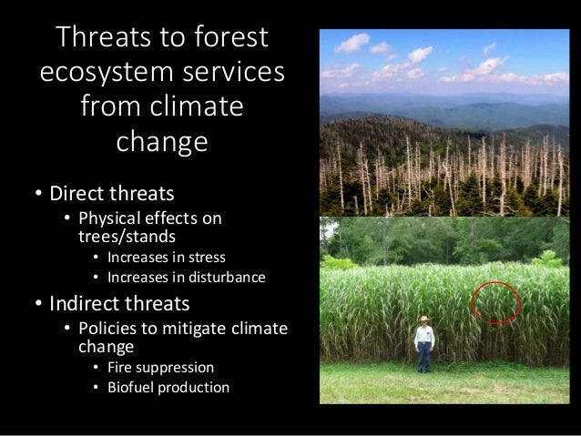 Indiana's Future Forests: A Report from the Indiana Climate Change Impacts Assessment