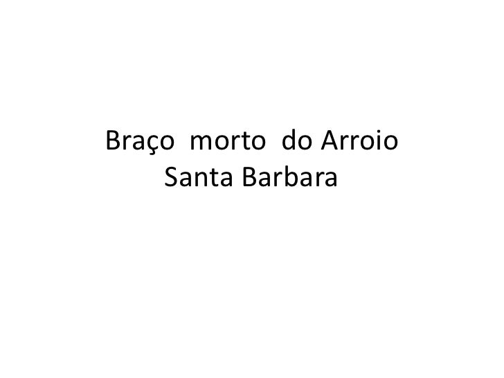 Braçomorto  do ArroioSanta Barbara<br />