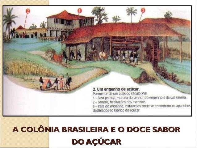 A COLÔNIA BRASILEIRA E O DOCE SABORA COLÔNIA BRASILEIRA E O DOCE SABOR DO AÇÚCARDO AÇÚCAR