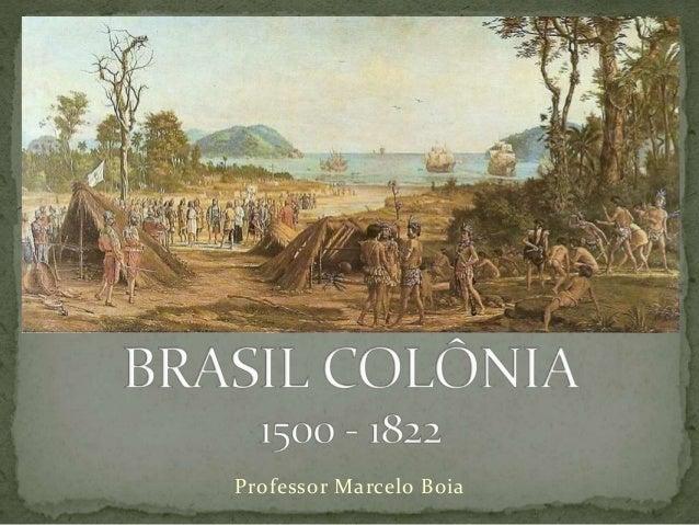Professor Marcelo Boia