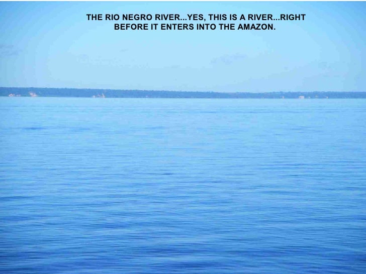 THE RIO NEGRO RIVER...YES, THIS IS A RIVER...RIGHT       BEFORE IT ENTERS INTO THE AMAZON.