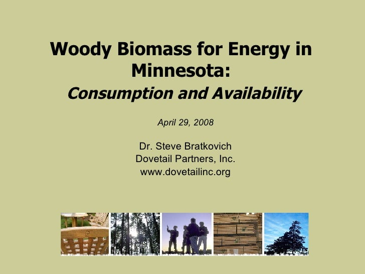 Woody Biomass for Energy in Minnesota:   Consumption and Availability <ul><li>April 29, 2008 </li></ul><ul><li>Dr. Steve B...