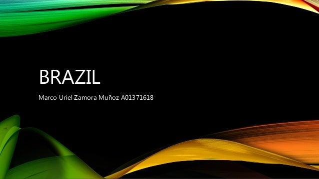 BRAZIL Marco Uriel Zamora Muñoz A01371618