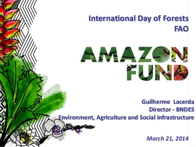 1 March 21, 2014 International Day of Forests FAO Guilherme Lacerda Director - BNDES Environment, Agriculture and Social I...