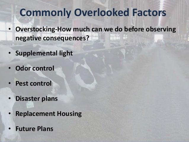 Freestall Barn Evaluation and Renovation