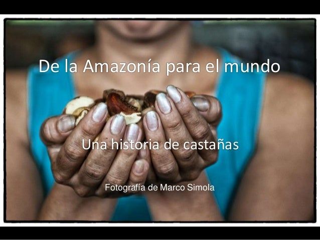 De la Amazonía para el mundoUna historia de castañasFotografía de Marco Simola