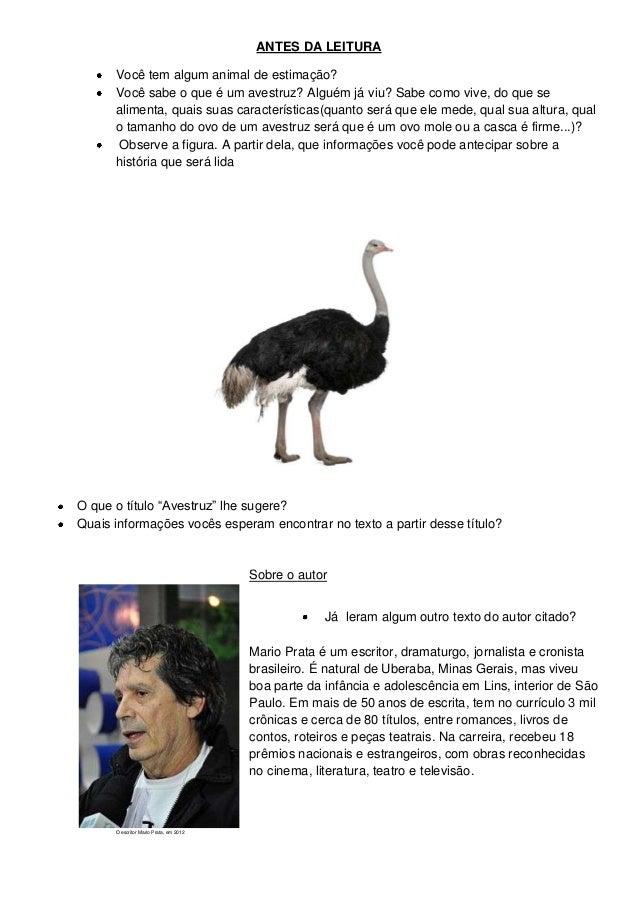 ANTES DA LEITURAVocê tem algum animal de estimação?Você sabe o que é um avestruz? Alguém já viu? Sabe como vive, do que se...