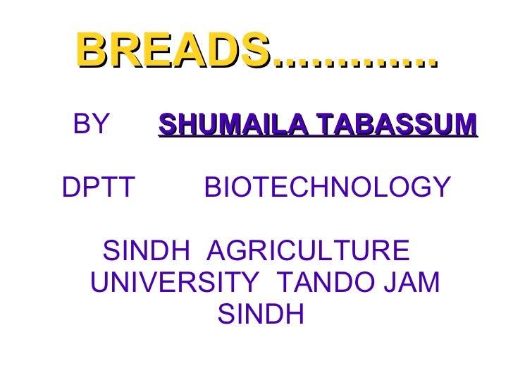 BREADS............. BY  SHUMAILA TABASSUM DPTT    BIOTECHNOLOGY SINDH  AGRICULTURE UNIVERSITY  TANDO JAM SINDH