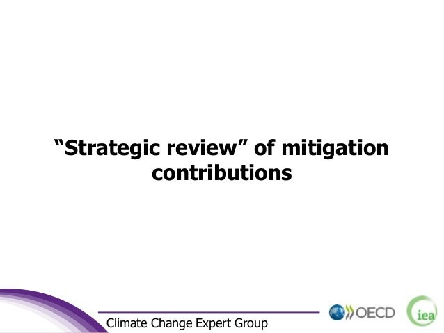"""2 Climate Change Expert Group """"Strategic review"""" of mitigation contributions"""