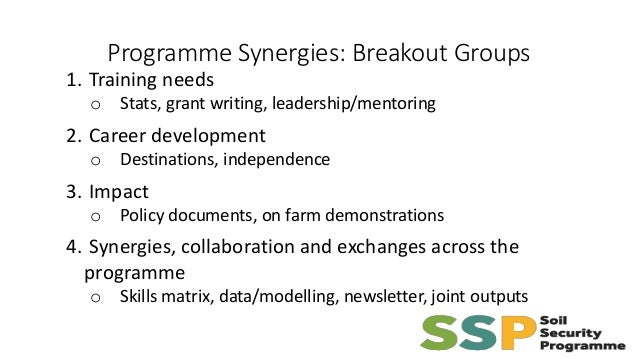 Programme Synergies: Breakout Groups 1. Training needs o Stats, grant writing, leadership/mentoring 2. Career development ...