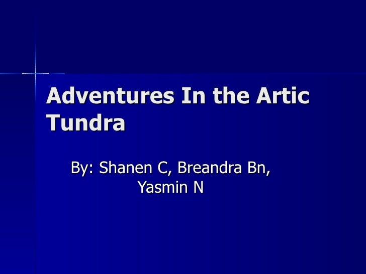 Adventures In the Artic Tundra By: Shanen C, Breandra Bn, Yasmin N