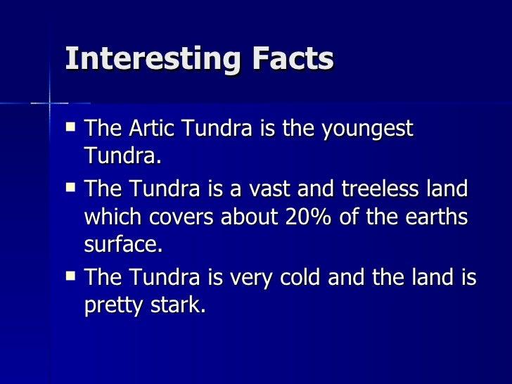 6th period tundra[1]